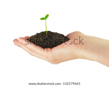 Green seedling plant whith soil in the hand - stock photo