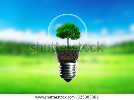 Green seedlings in a light bulb alternative energy concept, green blurred background.