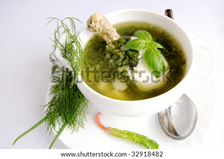 Green shchi with chicken in a white bowl, decorated with fresh dill and basil on white blur background