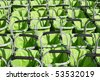 Green Shopping Baskets in a Row - stock photo