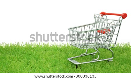 Green Shopping / Think Green Before You Shop / Environmentally Responsible Consumerism Concept - stock photo