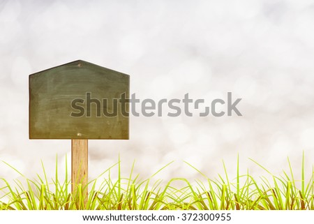 Green sign board with natural background