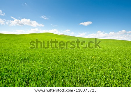 Green Sloping Meadows of Tuscany - stock photo