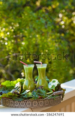 Green smoothie in two glass bottles on a fence. Also available in horizontal format.  - stock photo