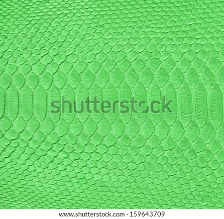 Green snake skin imitation background  - stock photo