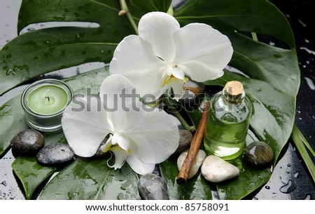 Green Spa-candle and massage oil with stones and candle on green wet monstera leaf - stock photo