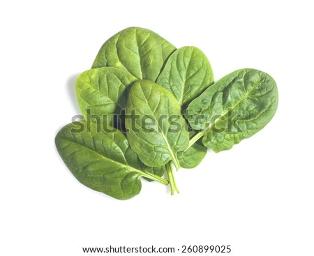Green spinach leaves on a white background - stock photo