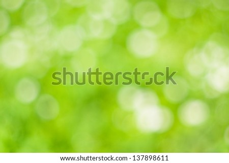 Green spring background - stock photo