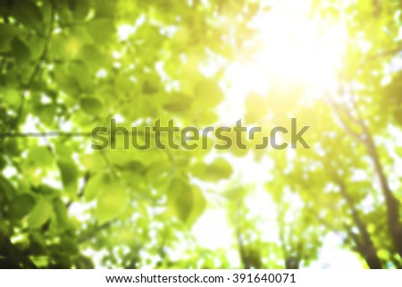 Green spring background with bokeh - stock photo