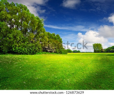 Green spring field and blue sky - stock photo