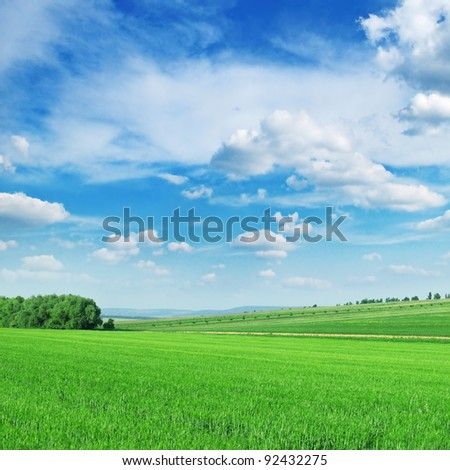 Green spring meadow and the beautiful blue sky - stock photo