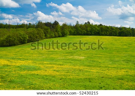 Green spring meadow with trees behind and sky above. - stock photo