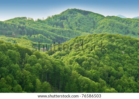 Green spring nature flourishing towards mountain top - stock photo