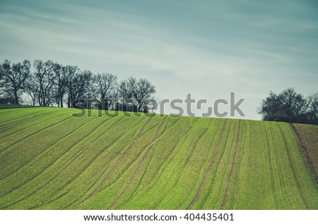 green spring scenic field countryside