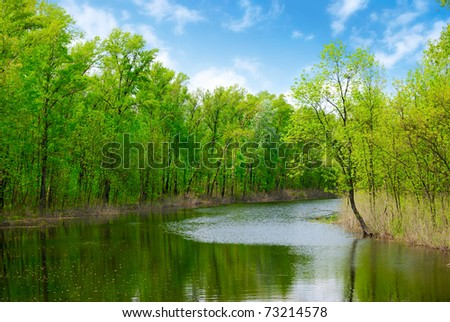 green spring  trees and water of river