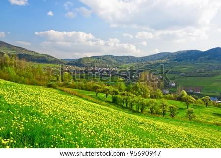 Green spring valley - stock photo