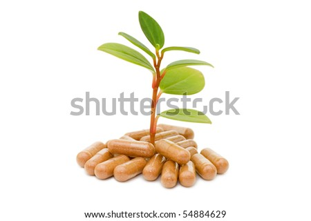 Green sprout from pills - stock photo