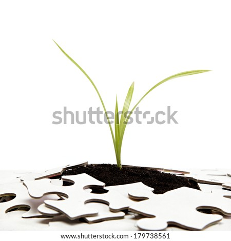 Green sprout from the earth makes its way through the puzzle. - stock photo