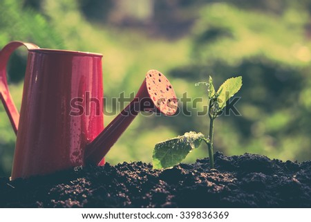 Green sprout growing with filter effect retro vintage style - stock photo