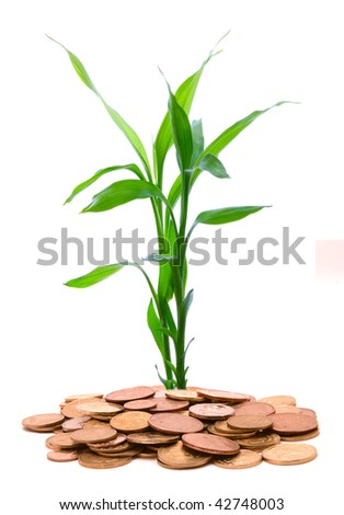Green stalks growing from a handful of gold coins on a white background