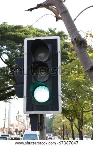 green stoplight transort with green tree - stock photo