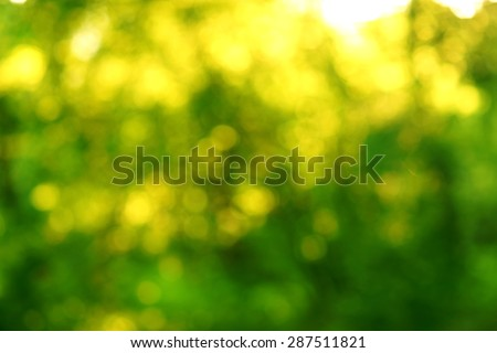 green summer defocused abstract bokeh background                                - stock photo