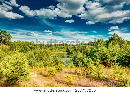 Green Summer Forest View. Sunny Day, Blue Sky - stock photo