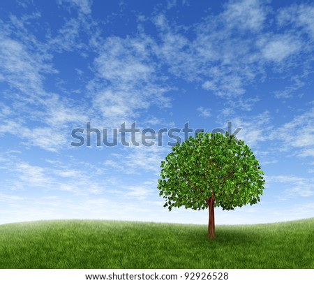 Green summer landscape with a single tree on a rolling grass hill with a blue sky with clouds showing a tranquil peaceful panoramic meadow in a green landscaped park. - stock photo