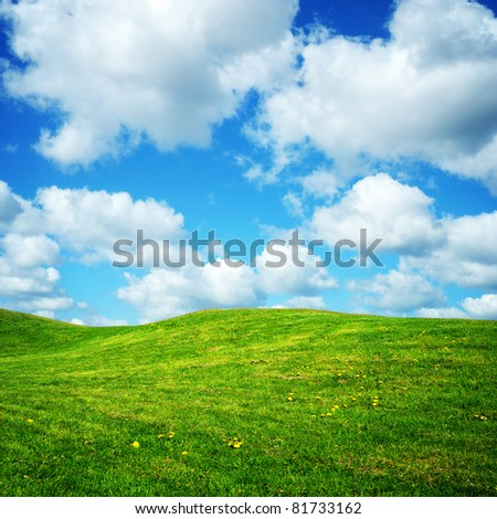 green summer meadow with small flowers and cloudy blue sky - stock photo