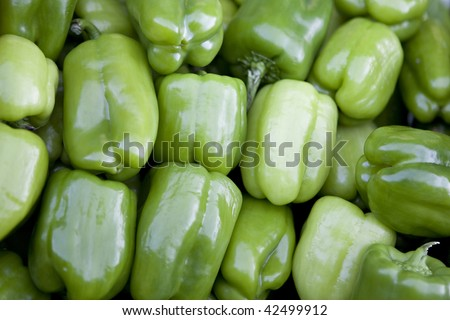 Green sweet peppers background