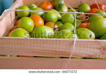 Green tomatoes in wood box to background - stock photo