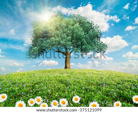 Green tree and spring flowers landscape - stock photo