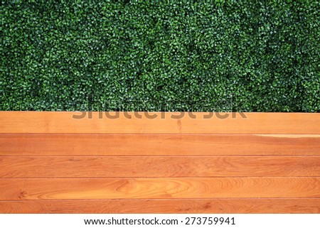 Green tree and wooden wall for closeup textured background - stock photo