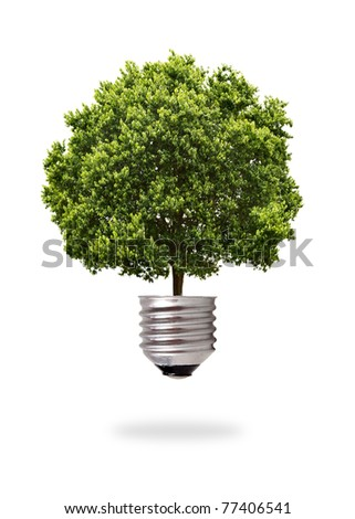 green tree growing out from a bulb - stock photo