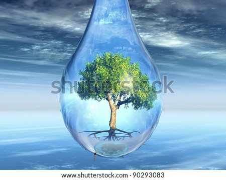green tree in a drop - stock photo