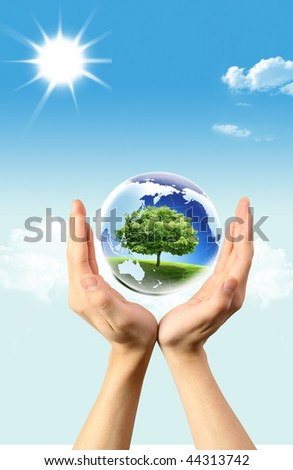 Green tree in Globe which is in hands - stock photo