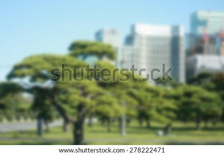 green tree in public park blur background - stock photo