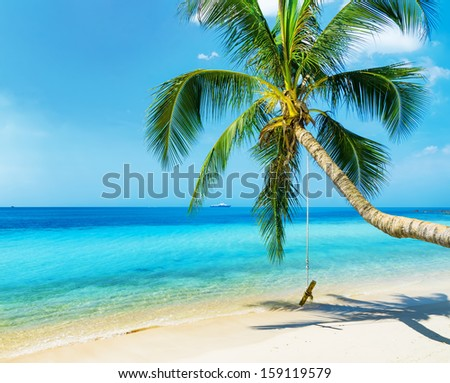 Green tree on white sand beach. - stock photo