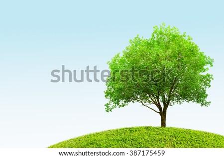 Green tree spring landscape - stock photo