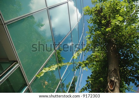 Green tree standing near business building - stock photo