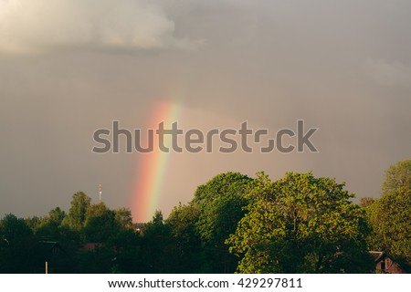 Green trees against a rainbow and gray clouds.