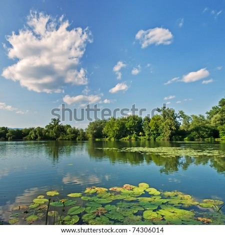 Green trees by the lake on a sunny day, with clouds on the sky and white lillies in the foreground - stock photo