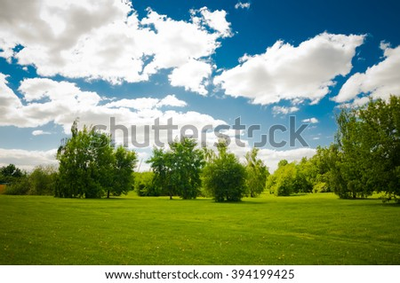 Green trees in beautiful park - stock photo