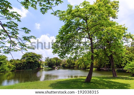 Green trees in beautiful park over blue sky - stock photo