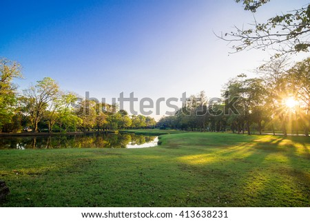 Green trees in beautiful park over blue sky in evening, Green garden - stock photo