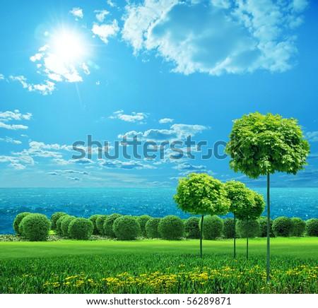 green trees on blue sky under the sun - stock photo