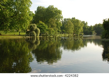 Green trees reflected on the water