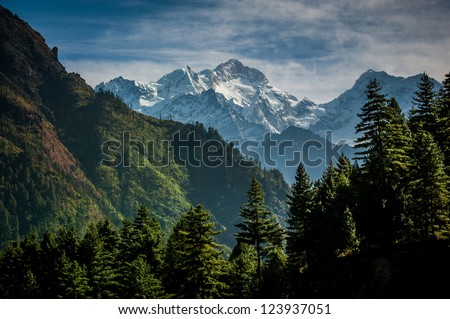 green trees with ice mountain background in Nepal, on the way to Manang. - stock photo