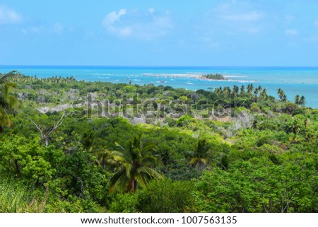 Green tropical beach