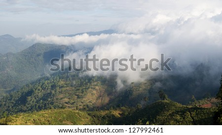 Green tropical mountain cover with clouds